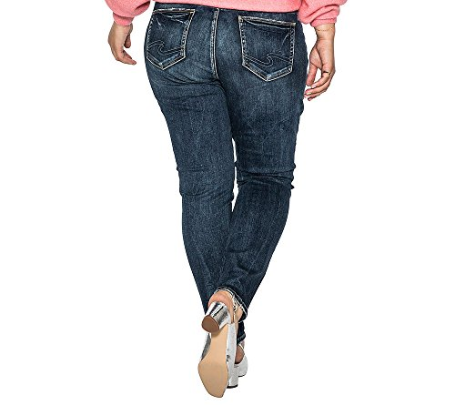 Silver Jeans Women's Plus Size Elyse Relaxed Fit Mid Rise Skinny Jeans, Vintage Indigo Embroidery, 16x29